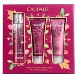 Caudalie Gift set thé des vignes 50ml+  shower gel 50ml + body lotion 50ml