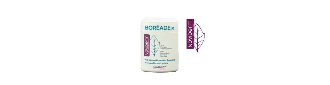 boreade r stick labial reparador 11ml
